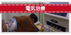 電気治療 banner